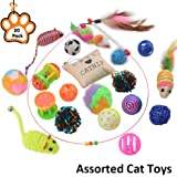 Petbemo Cat Toys 20 Pack Assorted Pet Cat Toys Collection Play Set Interactive Toys For Cats, Cat Toy Teaser Wand Best Cat Toys For exercise, Pet Thanksgiving Gift and Christmas Gifts