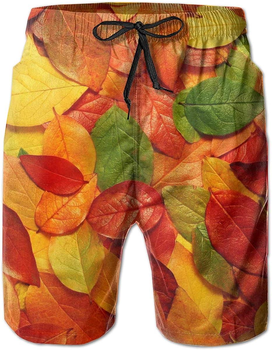 L Quick Dry Sports Running Beachwear Shorts, AMRANDOM Kids Boys Fall Leaf Comfortable Board Shorts Swim Trunks