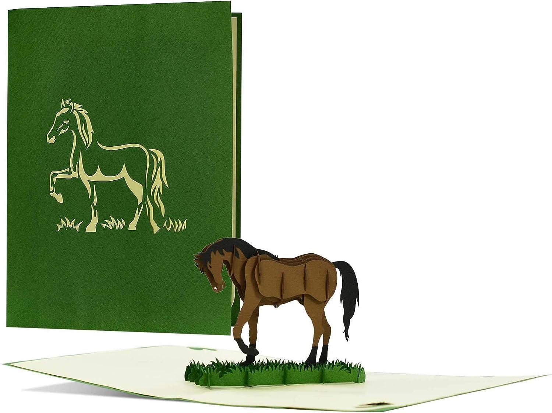 Elegante tarjeta de cumpleaños con cupón de caballo o regalo para jinetes y amantes de los caballos, ideal para mujeres y para niñas F20