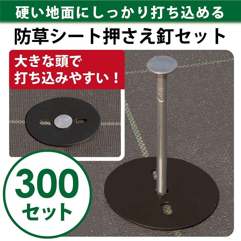 DAIM(第一ビニール)トンネル支柱(単品)  11C-6 4860 B00O1DN702