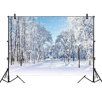 Amazon.com: Allenjoy fondos para fotografía de 8 x 6 pies ...