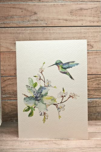Amazon supperb greeting cards watercolor spring flowers supperb greeting cards watercolor spring flowers hummingbird set of 2 valentines m4hsunfo