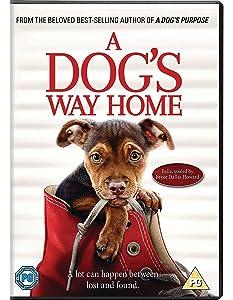 A Dog's Way Home [DVD] [2019]