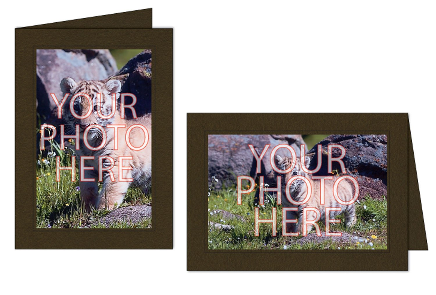 Photographer's Edge, Photo Insert Card, Chocolate with Black Border, Set of 10 for 4x6 Photos