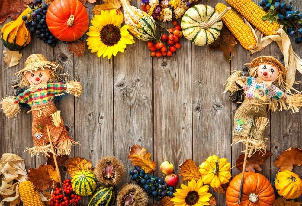 AOFOTO 秋の収穫シーン背景 秋 パンプキン フェスティバル 写真背景 7x5ft LBK11198 B07H5LMQTG