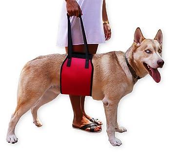 jhua perro perro de cableado de apoyo ascensor apoyo rehabilitación arnés para perros ayuda ayudar Sling
