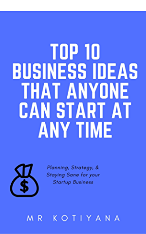 Business ideas For Beginners: The Lean Startup Ideas That Anyone Can Start At Any Time