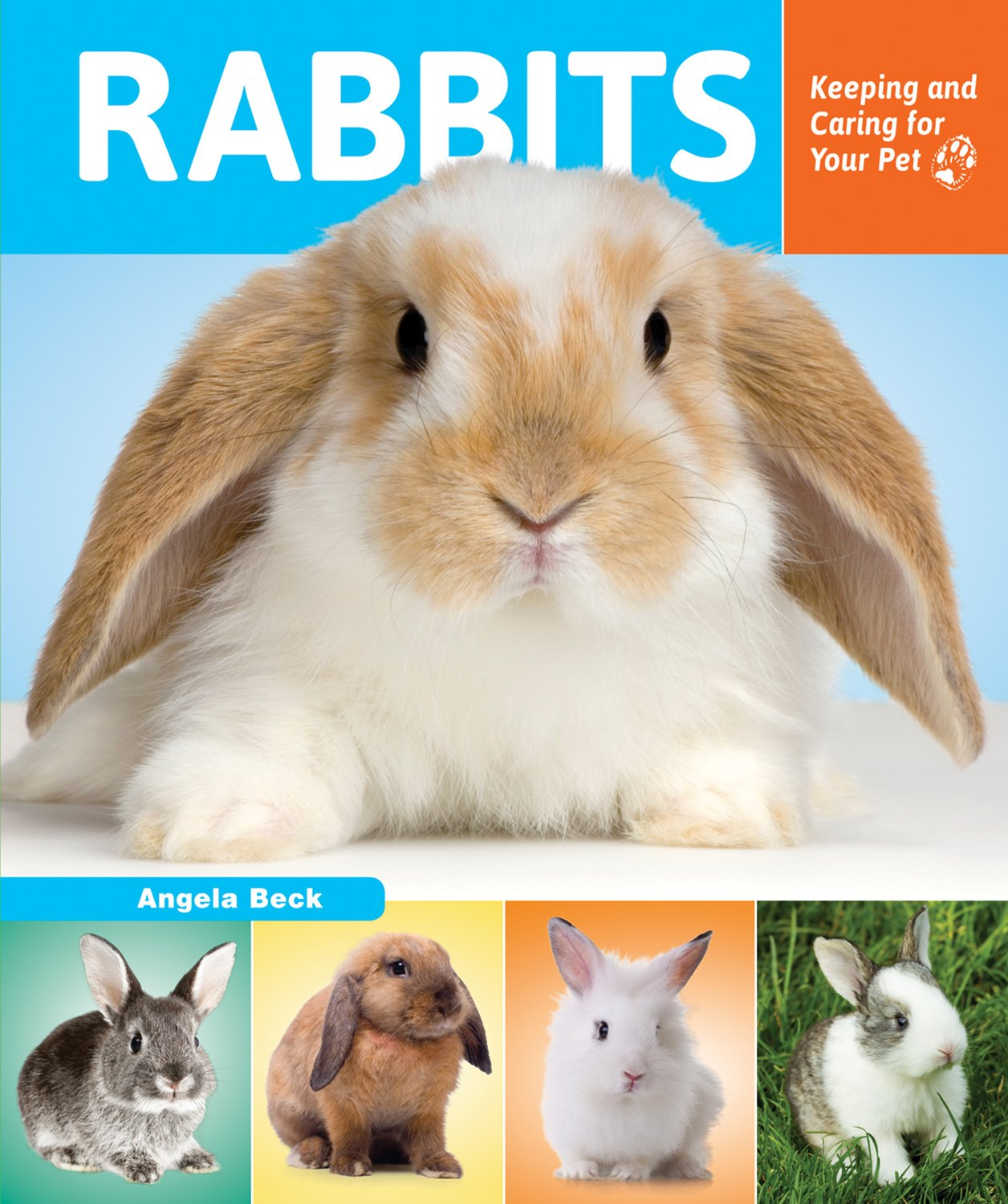 Rabbits: Keeping and Caring for Your Pet