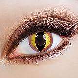 aricona Farblinsen – Katzenaugen deckend rose – farbige Kontaktlinsen ohne Stärke – bunte, farbig intensive gelb rosane Farbkontaktlinsen für Halloween & Karneval