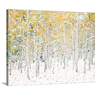 Quaking Aspens Canvas Wall Art Print, 30 x24 x1.25