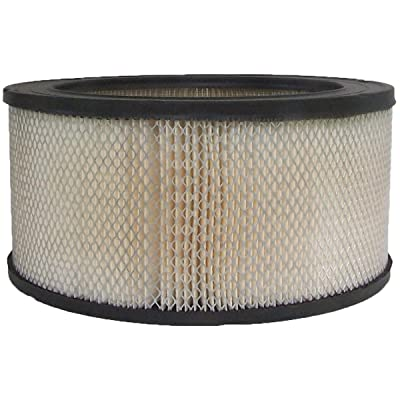 Luber-finer AF222 Heavy Duty Air Filter: Automotive