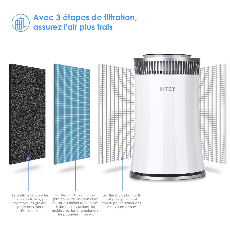 INTEY Filtre de Rechange 3 en 1 pour purificateur dair NY-BG55