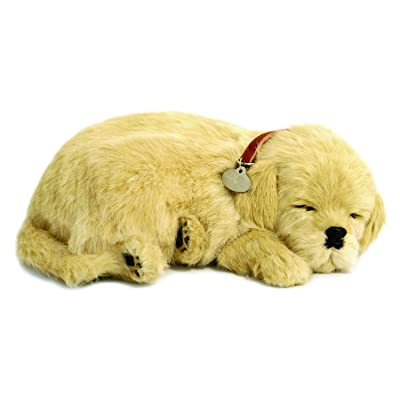 Perfect Petzzz Golden Retriever Plush: Toys & Games
