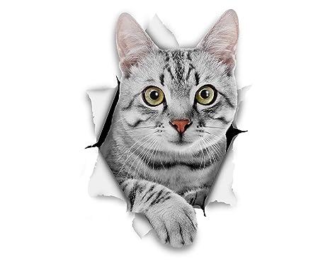 Winston & Bear Gato 3D pegatinas gato Tabby gris - Pack 2 - pegatinas para pared