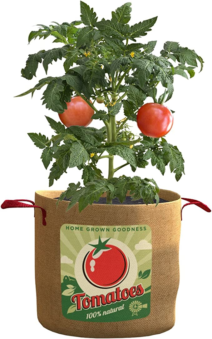 Amazon Com Panacea Products 84386 Grow Bag Tomatoes 20 Gallon Garden Outdoor