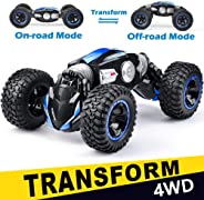 NQD RC Car Off-Road Vehicles Rock Crawler 2.4Ghz Remote Control Car Monster Truck 4WD Dual Motors Electric Racing Car, Kids T