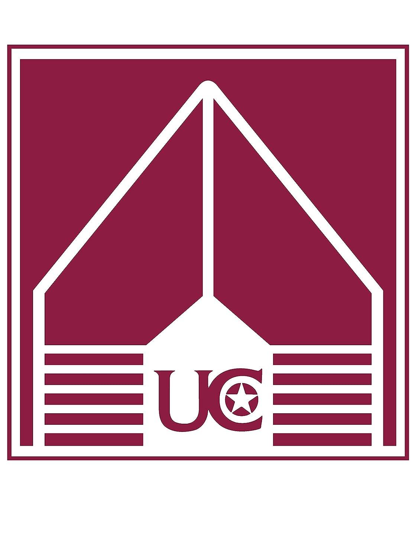 Official NCAA University of Charleston Highlanders PPCHA001 Mens//Womens Premium Triblend T-Shirt