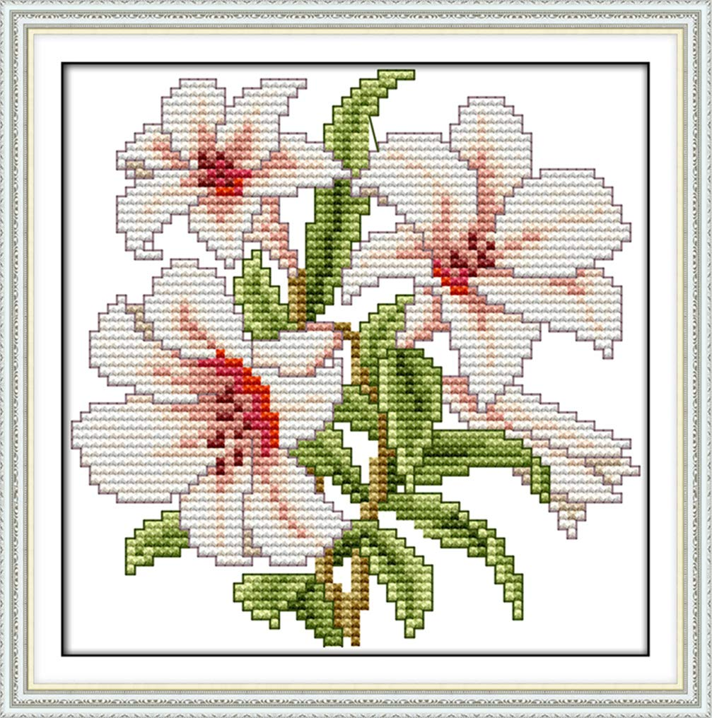 4 21/×21cm Cross Stitch Stamped Kits for Beginners 11CT 3 Strands DIY Handmade Needlework Set Cross Stitching Stamped Patterns Embroidery Frameless LovetheFamily Flower of Happiness