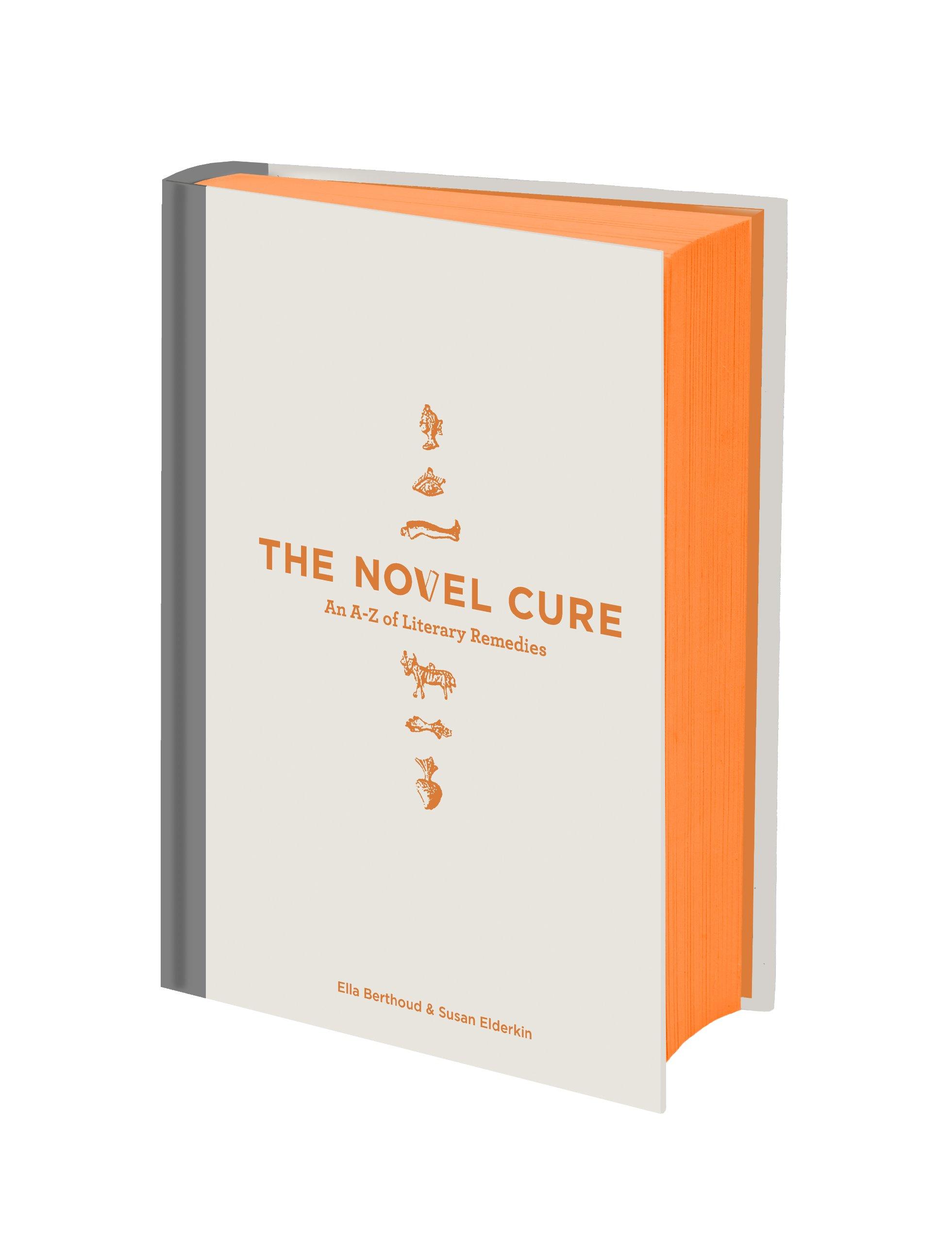 The Novel Cure: An A To Z Of Literary Remedies: Amazon: Ella  Berthoud, Susan Elderkin: Books