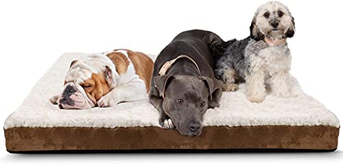 Paws Pals Orthopedic Pet Bed Foam-Mattress for Dogs Cats – Quilted Rectangular Fits Crate Carrier
