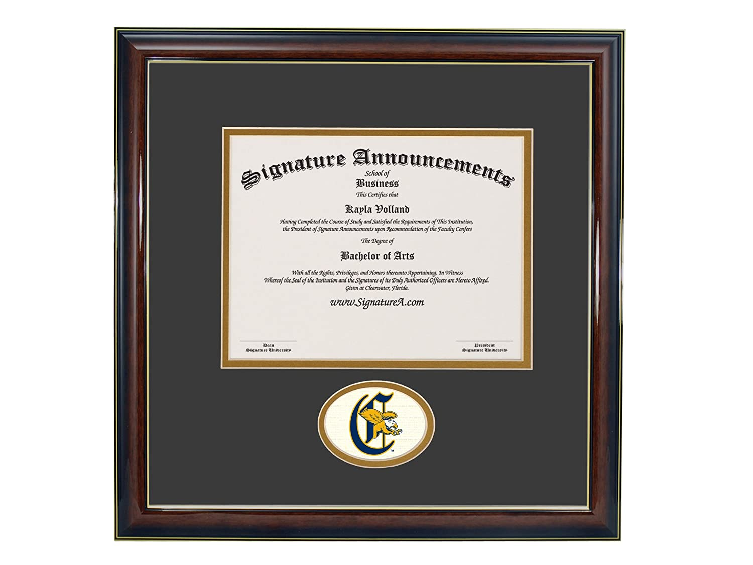 Signature Announcements Canisius-College Undergraduate Professional//Doctor Sculpted Foil Seal Graduation Diploma Frame 16 x 16 Gold Accent Gloss Mahogany