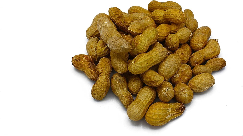 Family Farm and Feed   Four Seasons   in Shell Peanuts   Wild Bird Food   Backyard Songbird   2 Pounds