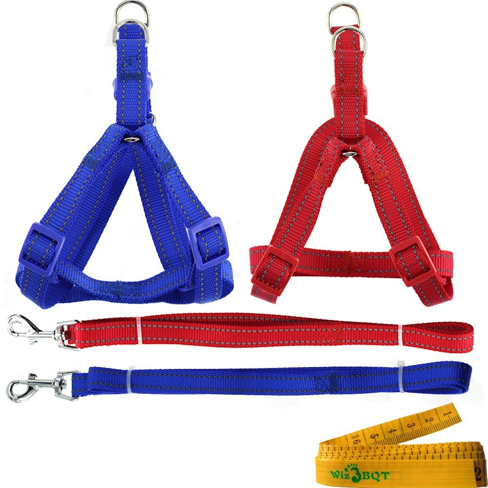 2 Pcs Adjustable Nylon Reflective Cat Dog Pet Harness and Leash Set for Cats Dogs Pets (Blue and Red)