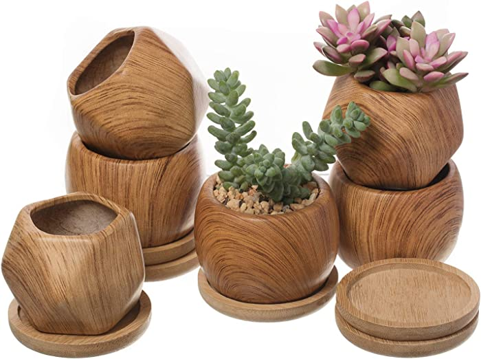 T4U 2.5 Inch Succulent Garden Pot with Bamboo Tray, Small Ceramic Wooden Pattern Windowsill Plant Pot Cactus Herb Planter for Home and Office Decoration Birthday Wedding Pack of 6