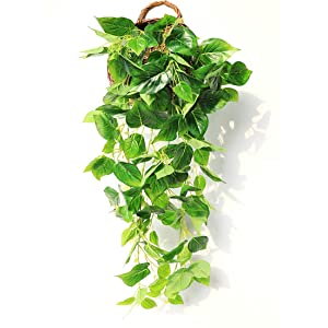 JUSTOYOU Artificial Hanging Plants Ivy Vine Fake Leaves Greeny Chain Wall Home Room Garden Wedding Garland Outside Decoration 3FT 1PCS(Scindapsus Vine)
