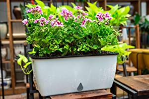 Automatically Absorb Water Cube Double Layer Window Box Plastic Vegetable Planters