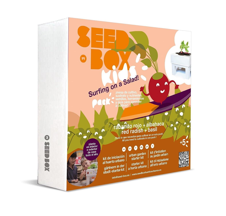 Seedbox Seed Box SBKSS - Salad, Verde, 19x6x19 cm: Amazon.es: Jardín