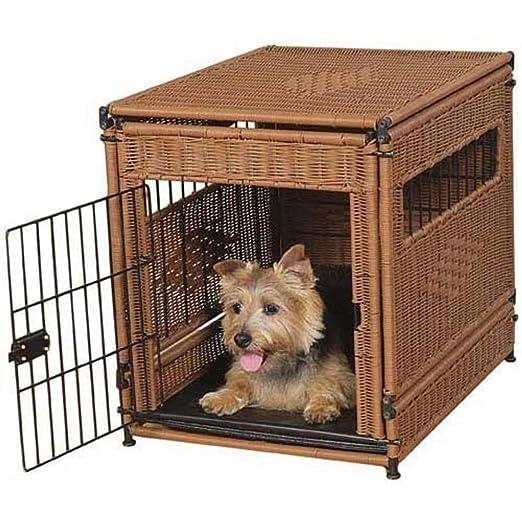 Short article about PetSafe PetSafe 13202