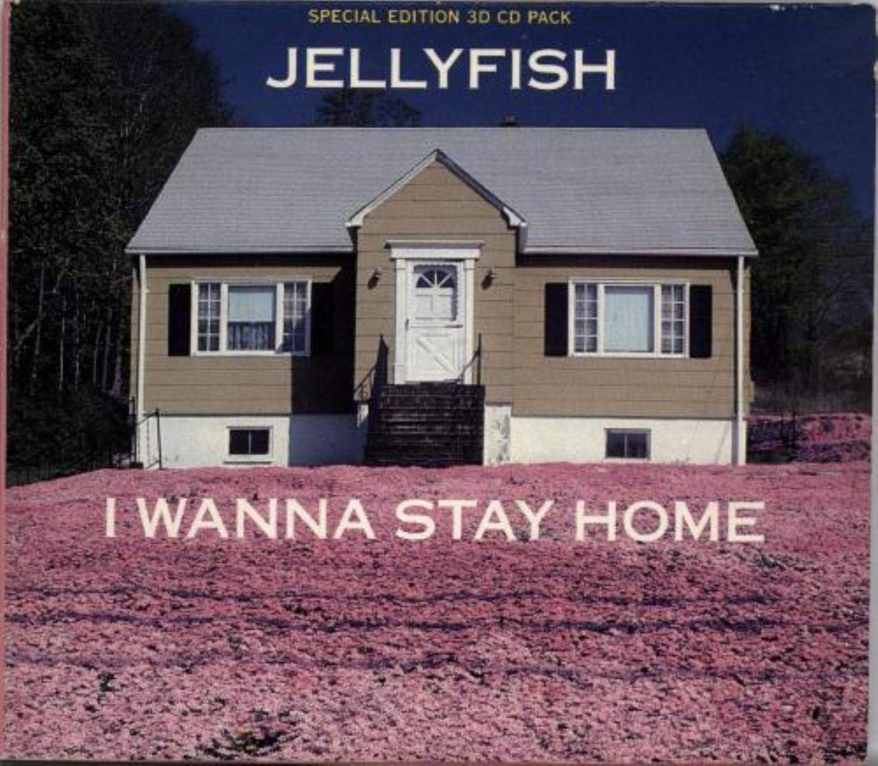 I WANNA STAY HOME CD UK CHARISMA 1991
