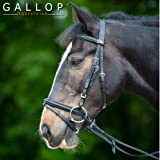 Gallop Leather Padded Bridle with FREE Rubber Reins Black or Brown