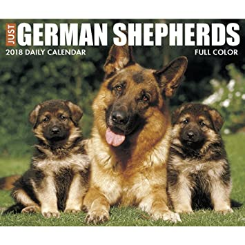 just german shepherds 2018 daily desk boxed calendar