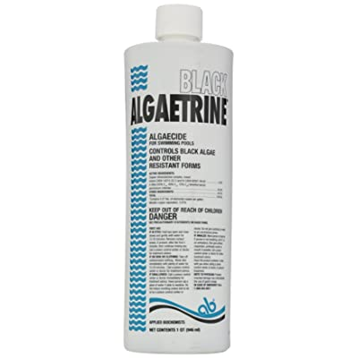 Applied Biochemist 406303A Black Algaetrine Algaecide, 32-Ounce : Swimming Pool Algaecides : Garden & Outdoor