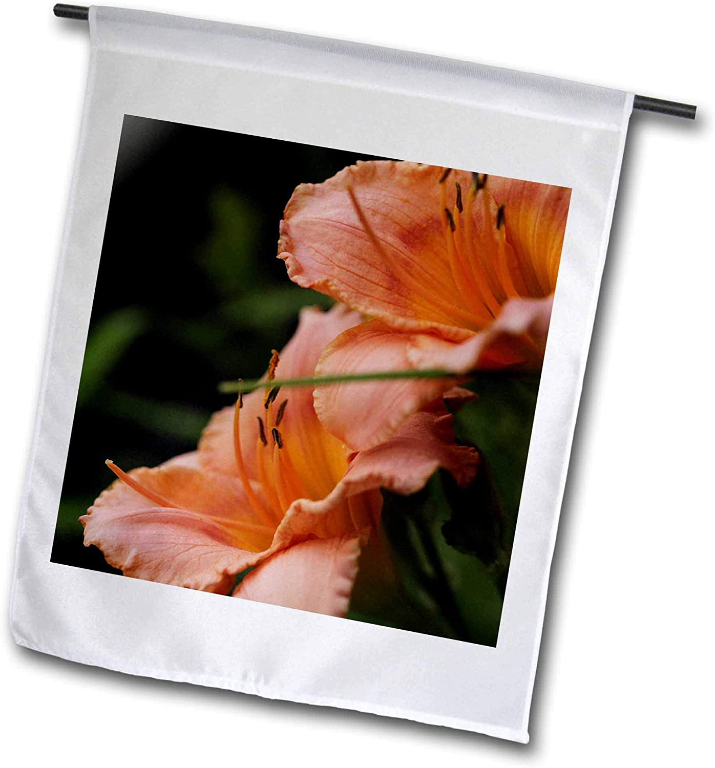 3dRose Stamp City - Flowers - Macro Photograph of a Pair of Orange daylilies in Full Bloom. - 12 x 18 inch Garden Flag (fl_319080_1)