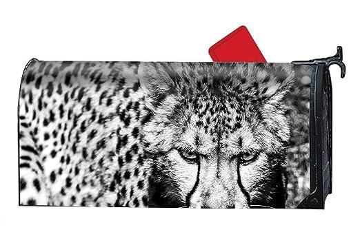 Una Stowe Cheetah Cats - Funda magnética de PVC para buzón, Color ...