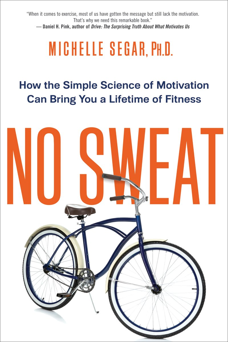 No Sweat Motivation Professional Reference product image