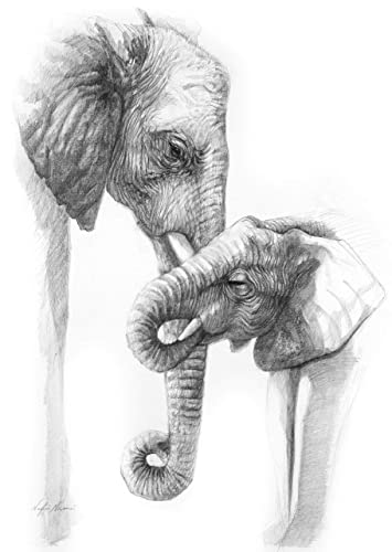 Amazon Com African Elephant Print From Original Drawing Of Elephant And Calf By Award Winning Artist Nafisa Nafisa Collections Handmade