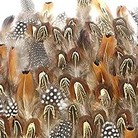Coceca 300pcs de plumes mixtes pour la décoration de toutes sortes bricolages pendant  l'anniversaire, mariages, fêtes, etc