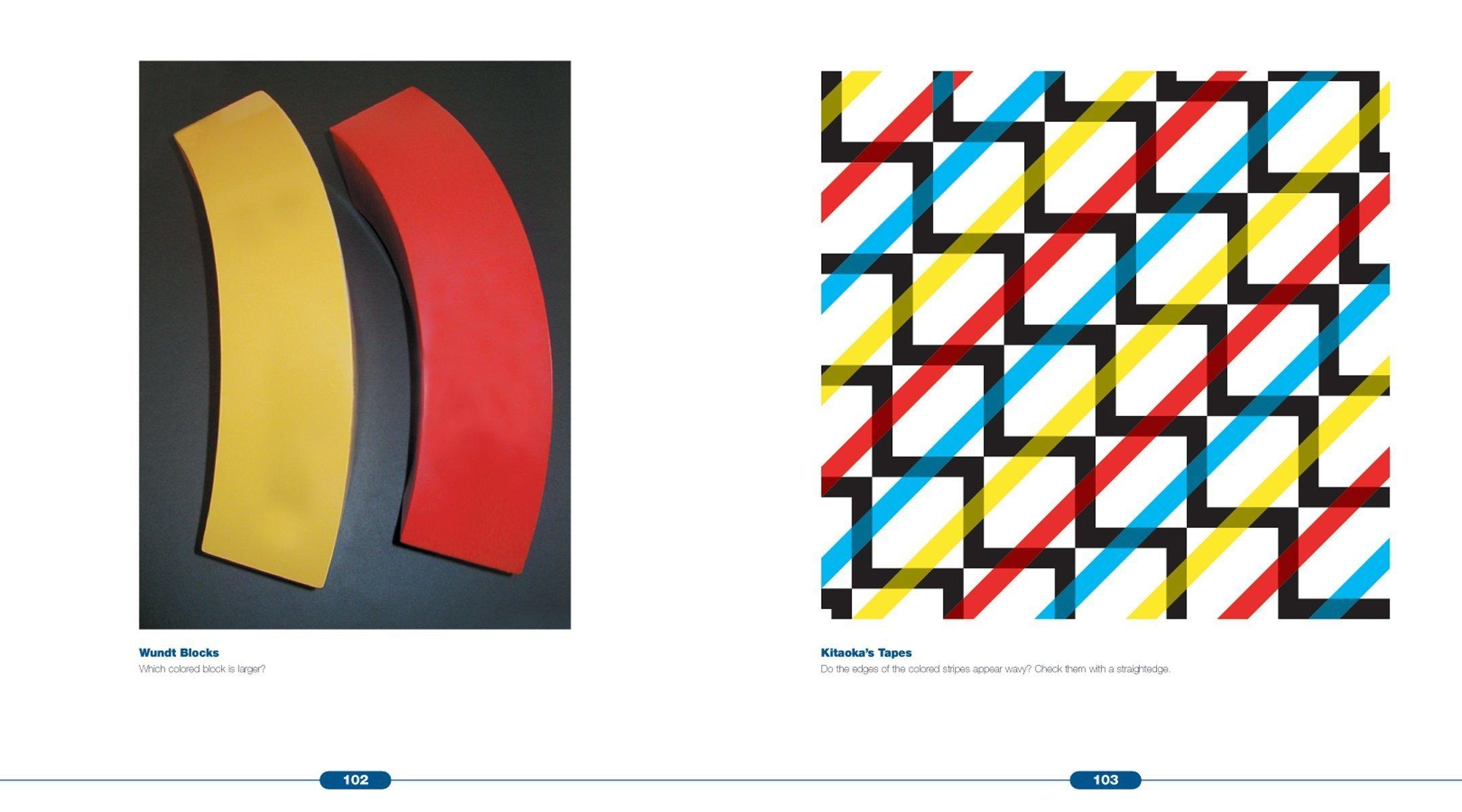 Optical Illusions: The Science Of Visual Perception (illusion Works): Al  Seckel: 9781554071517: Amazon: Books