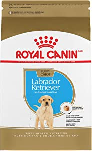 Royal Canin Labrador Retriever Puppy Breed Specific Dry Dog Food, 30 lb. bag
