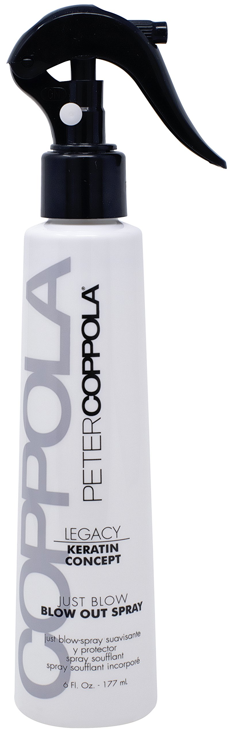 Peter Coppola Just Blow Blowout Spray - (6oz) Reduces Blow Dry Time, Heat Protectant Spray, Anti Frizz, Smoothes and Straightens all Hair Types. Conditions and Adds Shine