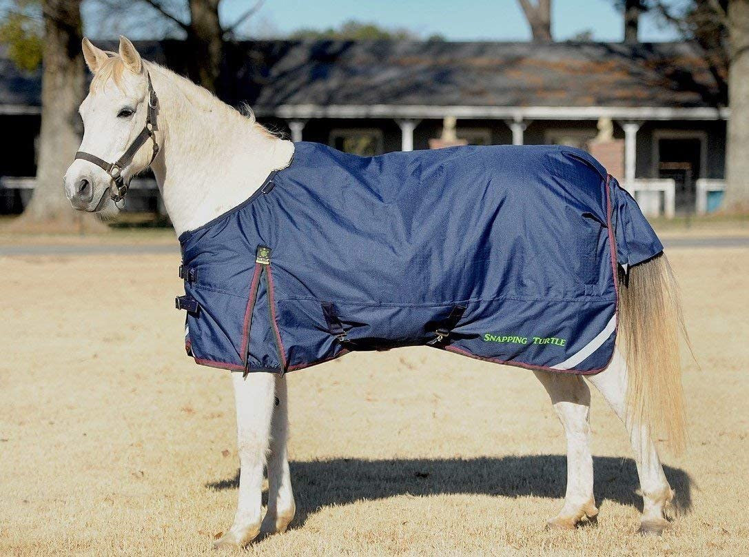 Turtle Neck Horse Blankets: Fly Turtle