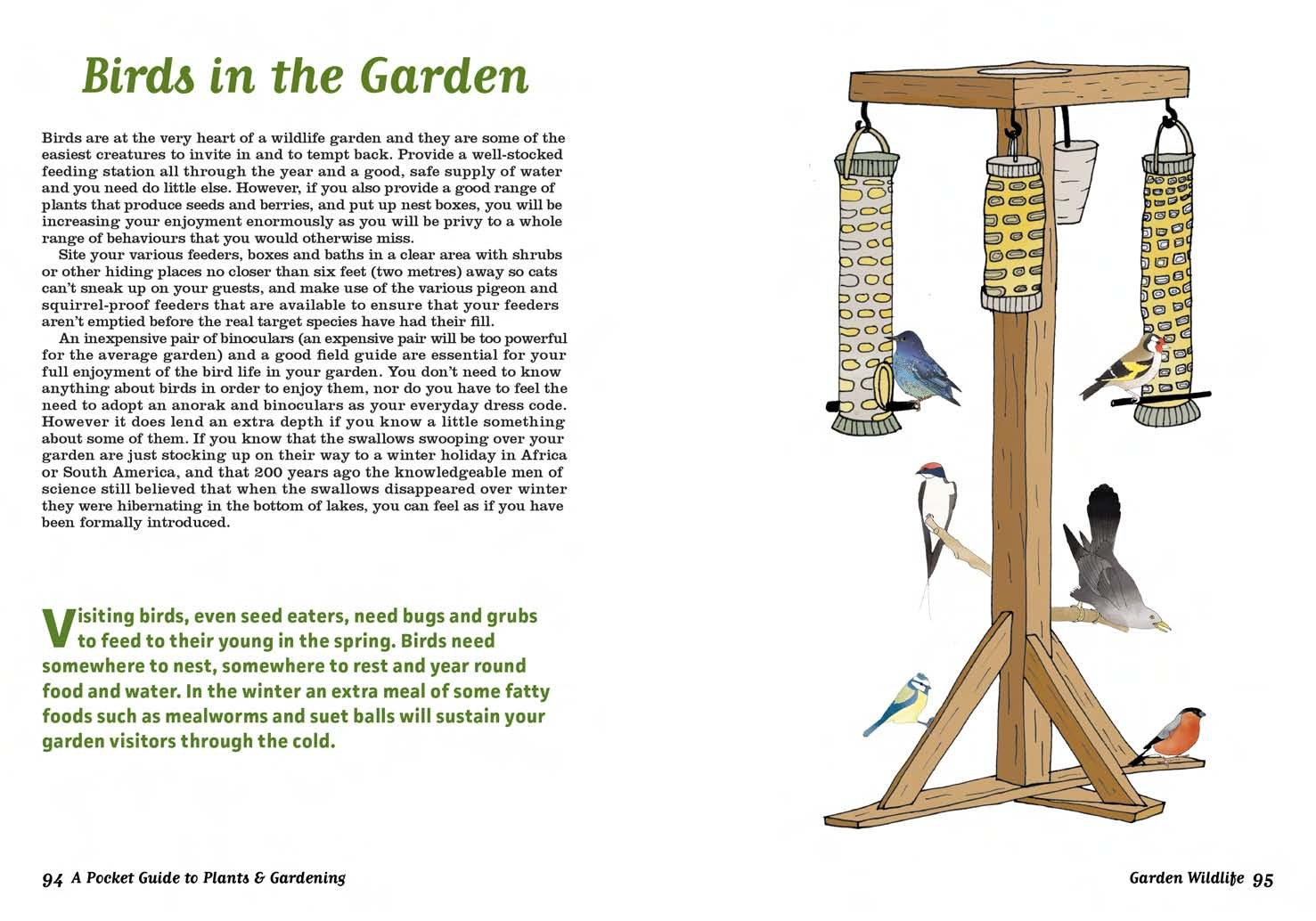 a pocket guide to plants and gardening elizabeth mccorquodale
