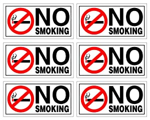 "(Set of 6) No Smoking Sticker | 2"" x 4"" 