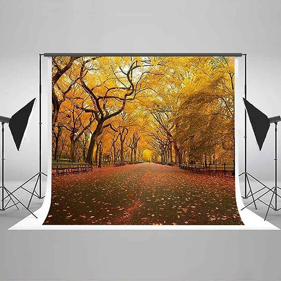 Amazon.com: vvm 7 x 5ft estética estilo telón de fondo con ...