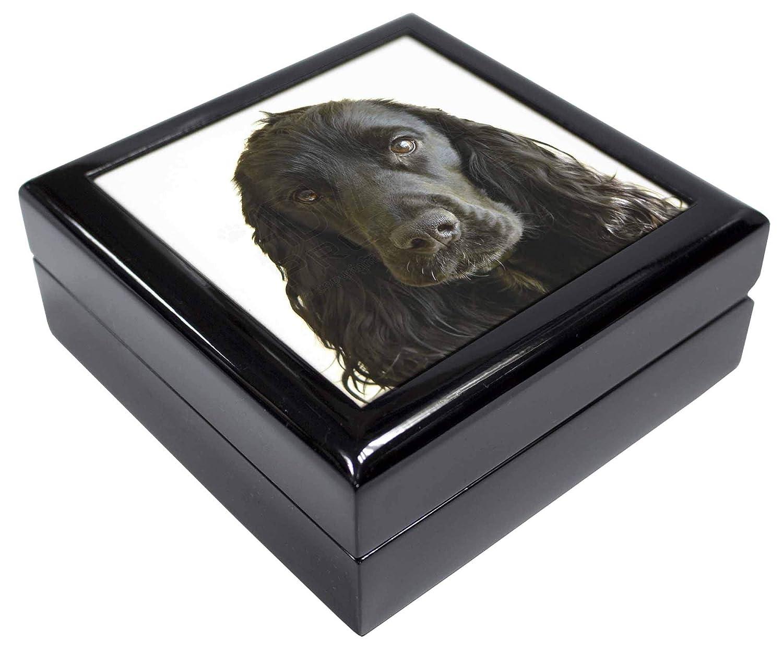 AD-SC8JB Black Cocker Spaniel Dog Keepsake//Jewellery Box Christmas Gift