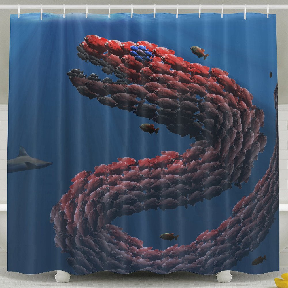 Amazon Pictures Of Funny And Happy Sea Monster Shower Curtain Designed 72 X 100 Polyester Home Kitchen